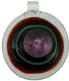Pink Dichroic Red/Clear Boro Round Pendant