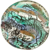 Fantasia Disc 40mm Black/Silver Foil Aquamarine