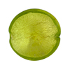 Peridot White Gold Murano Glass Disc 25mm