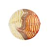 Orange White Filigrana Fenicio Gold Foil Disc 20mm Murano Glass