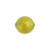Peridot 12mm 24kt Gold Foil Round, Murano Glass Bead