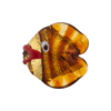 Murano Glass Lampwork Puffy Gold Fish Small Gold Foil Topaz