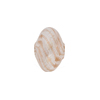 White/Aventurina Spiral Cipollina Blown Bead 15mm
