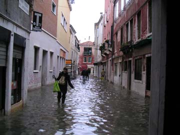 High Water Venice Italy Wading in Streets