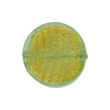 Mint Coin Straight Sides 24kt Gold Foil  Murano Glass Bead 20mm