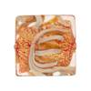 Calcedonia Coral and Gold Foil Murano Glass Square 23mm