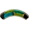 Murano Glass Bead Peridot and Aqua Arlecchino Curve 40mm 24kt Gold Foil