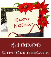Christmas Gift Certificate $100