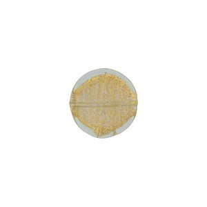 Gold Foil Disc Flat 10mm Alessandrite Murano Glass Bead